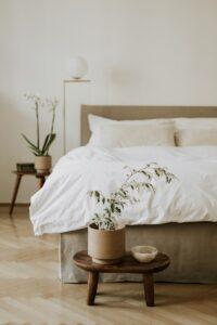 A fényes lakásban a szobanövények gondozása sem okoz gondot